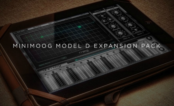 Copia di model d expansion feature 2 592x361 - Moog Music - Minimoog Model D Expansion Pack