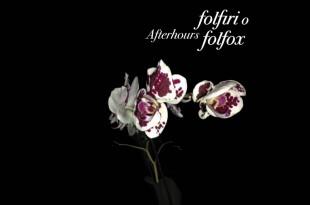 Afterhours Folfiri o Folfox 310x205 - Afterhours - Folfiri o Folfox