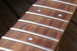 DSC00970 310x205 - Guitar News - Nuove leggi su palissandro e bubinga