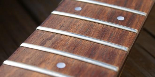 DSC00970 660x330 - Guitar News - Nuove leggi su palissandro e bubinga