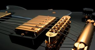Pickups  310x165 - Pickups magnetici per chitarra elettrica e componenti passivi: breve guida.