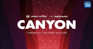 Cayon Cinematic Texture Guitars 310x165 - Canyon: Cinematic Texture Guitars.