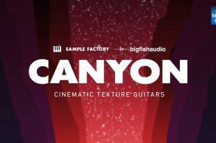 Cayon Cinematic Texture Guitars 310x205 - Canyon: Cinematic Texture Guitars.